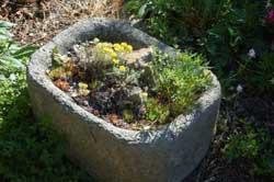 Alpine Garden Design Exterior Garden Design Garden Design With Rock Garden Plants New England .