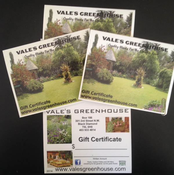 Gift Certifictates at Vale's Greenhouse
